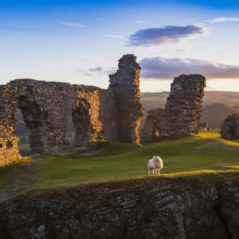 Dinas Bran Castle 2